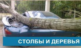 Ущерб от столбов и деревьев